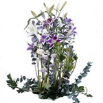 Bouquet de fleurs livr en 4 heures : BLUEBELL