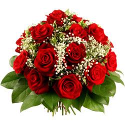 http://florajet.net/VICTORIA_929_250.jpg